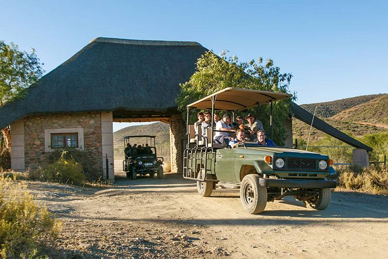 Game drive at Chandelier Game Lodge