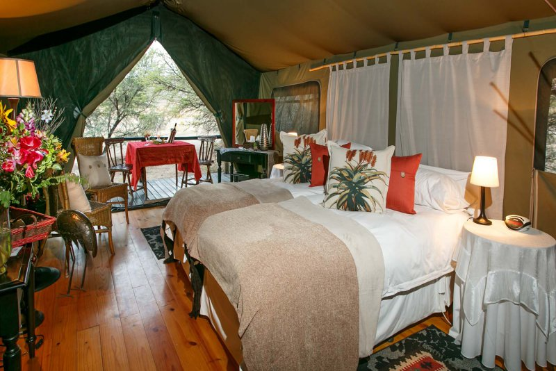 ... Luxury tent accommodation ... & Oudtshoorn Tented Accommodation | Self catering Oudtshoorn