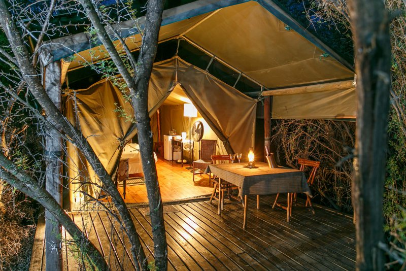 ... Luxury tent accommodation ... : tent accommodation - memphite.com