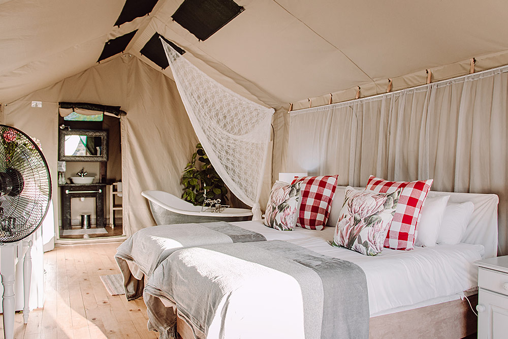 Excutive Tents at Chandelier Game Lodge